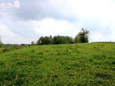 Działka budowlano-rolna Krzywe