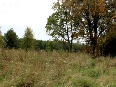 Działka budowlano-rolna Leszczewo
