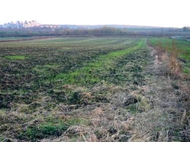 Działka rolna Chorzów