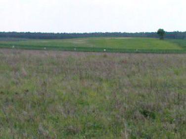 Działka budowlano-rolna Lipinka