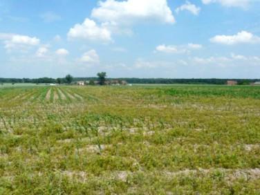 Działka rolna Namysłów