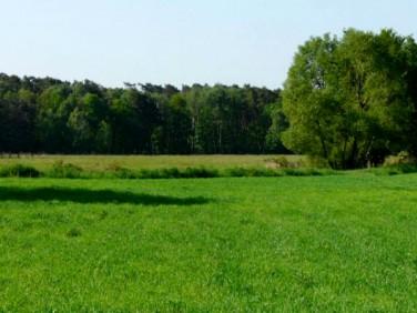 Działka rolna Domaszowice