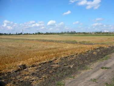 Działka rolna Poznań