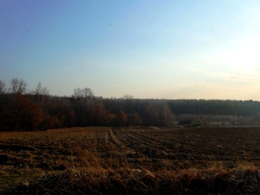 Działka budowlano-rolna Miechów