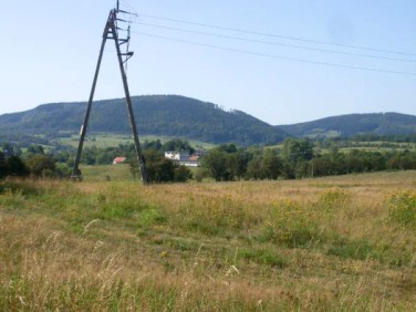 Działka Głuszyca
