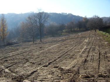 Działka budowlano-rolna Brzoskwinia