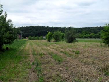 Działka budowlano-rolna Jaroszyn