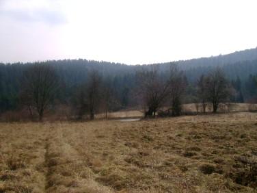 Działka siedliskowa Huzele