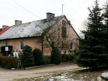 Dom Renice