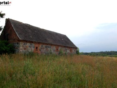 Działka budowlana Elgnowo