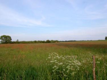Działka rolna Jasionówka