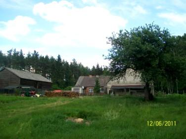 Dom Witkowo