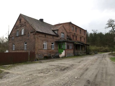 Dom Kije