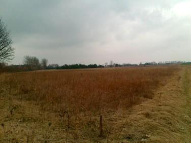 Działka budowlano-rolna Orzeszkowo