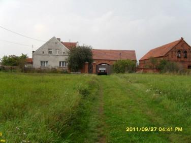 Dom Krzepielów