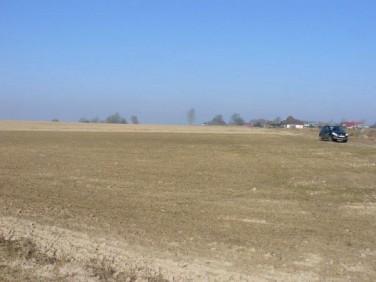 Działka rolna Barnisław