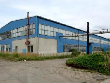 Budynek użytkowy Jarocin
