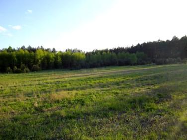 Działka budowlano-rolna Tajęcina