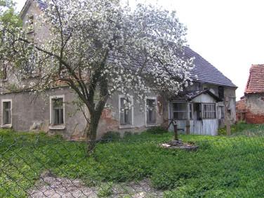Dom Niegosławice