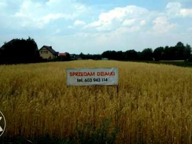 Działka budowlano-rolna Nasiegniewo