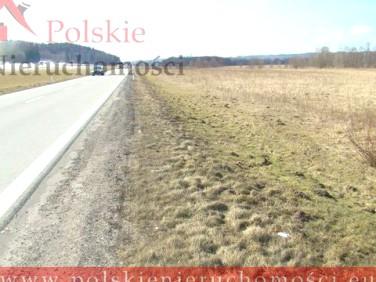 Działka rolna Łęczyce