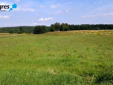 Działka rolna Jejkowice