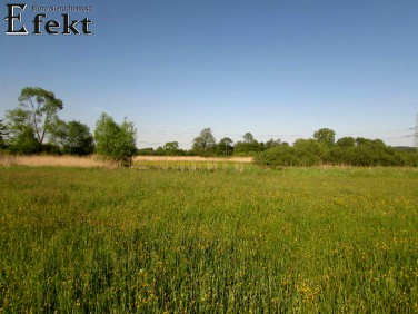 Działka budowlano-rolna Rybna
