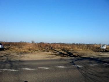 Działka Domasław