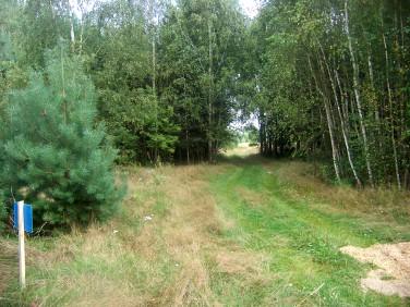 Działka rolna Łukowiec
