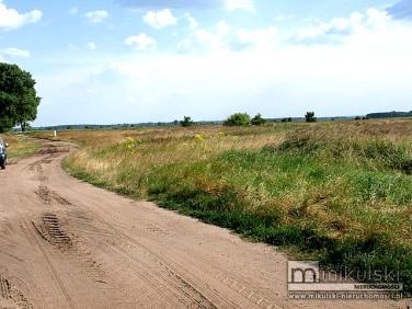 Działka budowlano-rolna Lubczyna