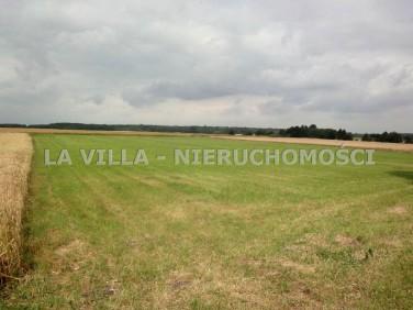 Działka rolna Gronówko