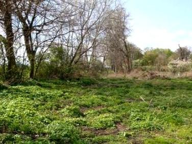 Działka budowlano-rolna Sulimów