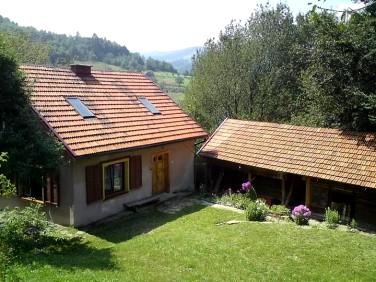 Dom Brzyna