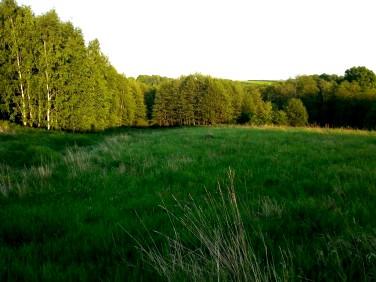 Działka rolna Babica