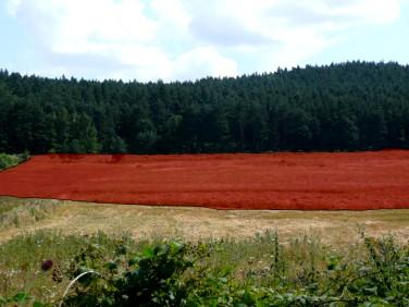 Działka rolna Sulistrowice