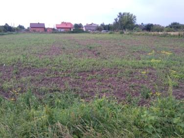 Działka budowlano-rolna Sandomierz