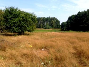 Działka rolna Ładzin