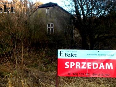 Dom Płaza sprzedaż