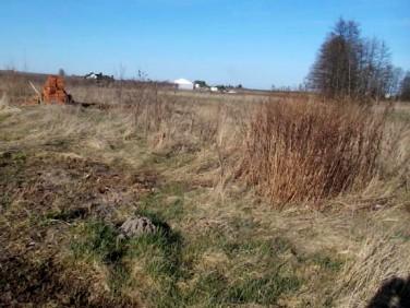 Działka budowlana Kobylin