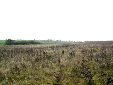 Działka rolna Kołbaskowo