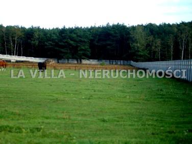 Działka budowlano-rolna Kamieniec