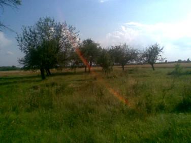 Działka budowlano-rolna Mniszków