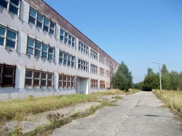 Budynek użytkowy Chojnów