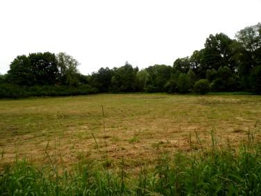 Działka rolna Wałbrzych
