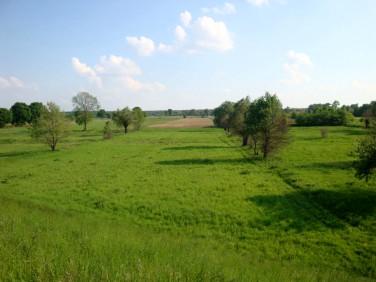 Działka budowlano-rolna Śladów