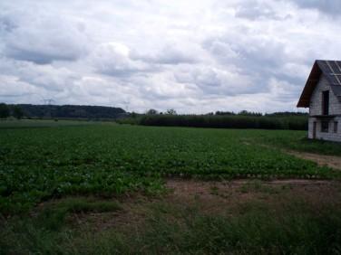 Działka budowlana Malbork
