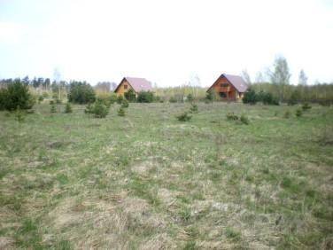 Działka siedliskowa Pilchy