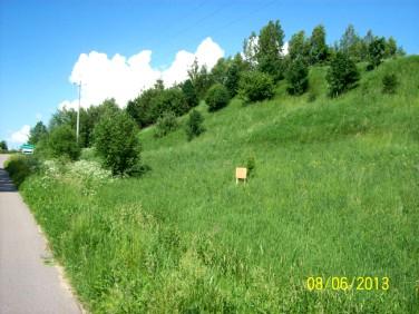 Działka rekreacyjna Leszczewo