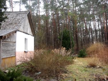 Dom Kamień-Kolonia