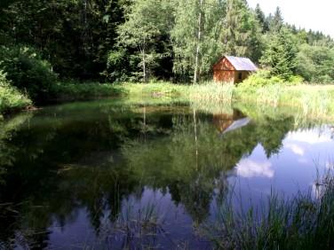 Działka siedliskowa Lachowice